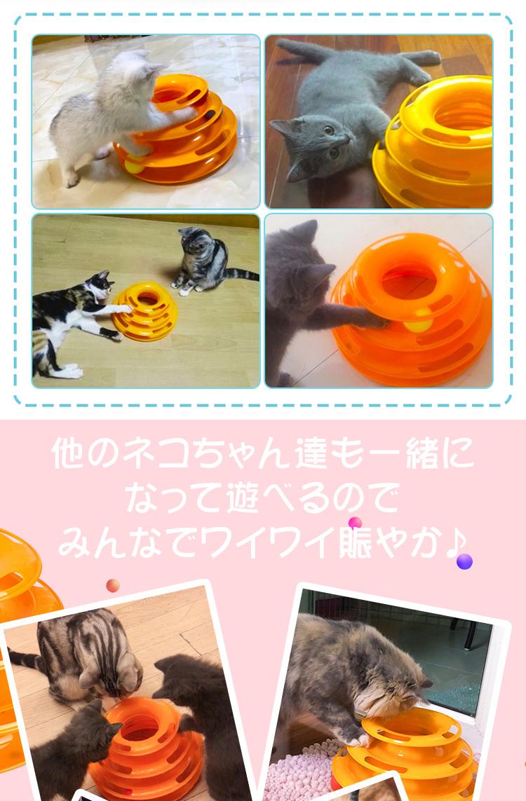 くるくるタワーボール猫 pt016