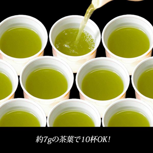 業務用煎茶13号(並)500g