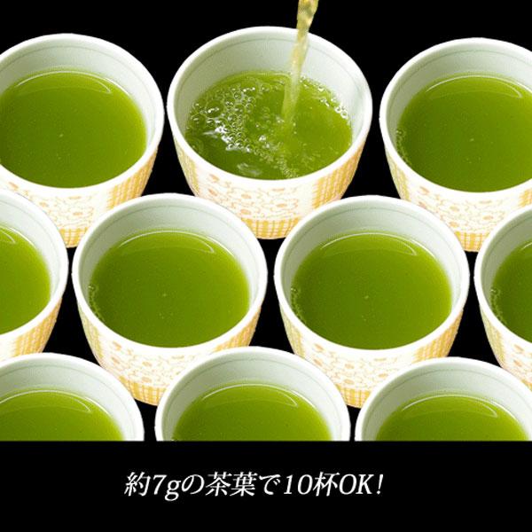 業務用煎茶17号(並)500g