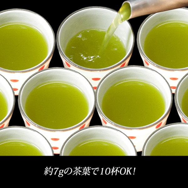 業務用煎茶20号(中)500g