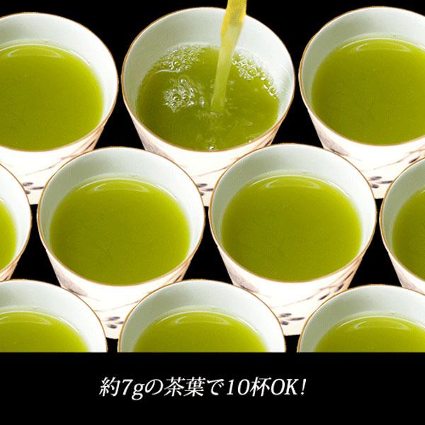 業務用煎茶40号(上)500g
