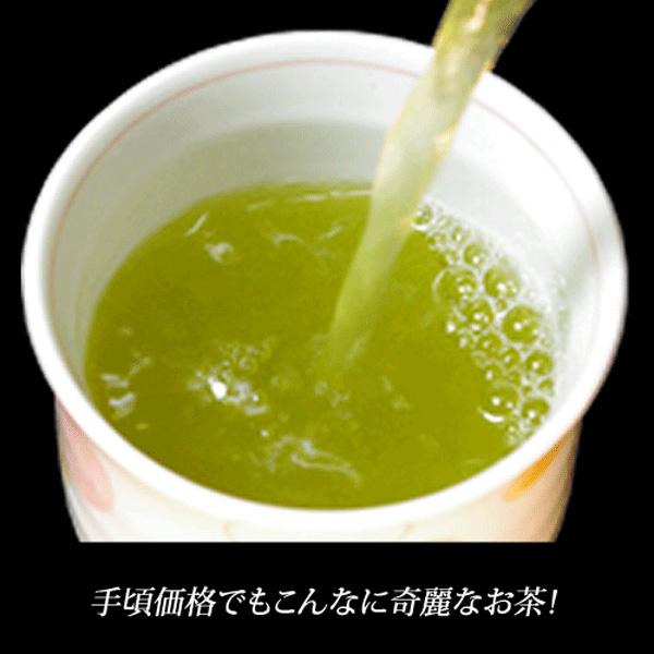 業務用煎茶13号(並)1kg