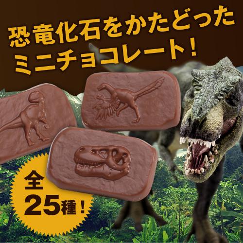 【最高級チョコレート使用】楽しむチョコ♪ジュラシックショコラ25(チョコレート)