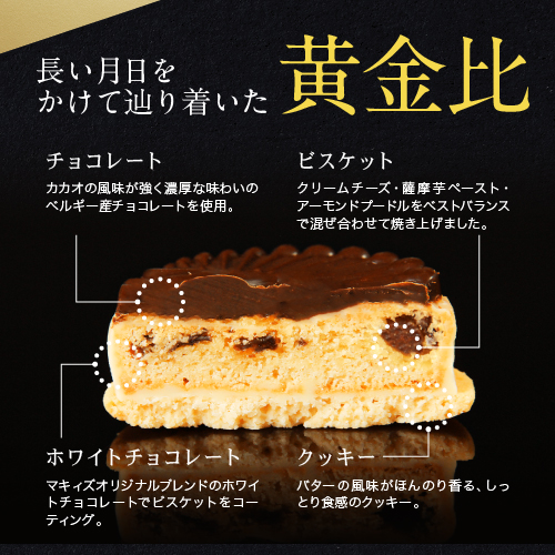 洒落神戸チョコさんど(10個セット)
