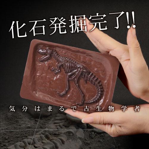 【オールドブック仕様】最高級チョコレートを使った、割って!掘って!楽しむチョコレート★ジュラシックショコラ【ディグアップ&パズル】(チョコレート)【お子様へ】