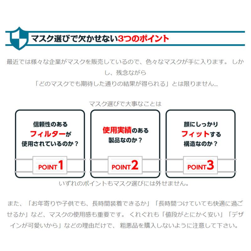 特殊ドロマイト JAPAN99マスク 580114 1箱(2枚入)(即日出荷)