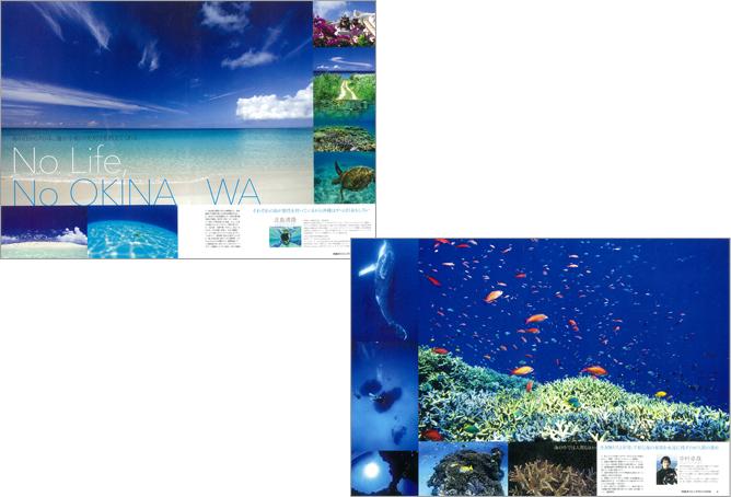 沖縄ダイビングガイド2016