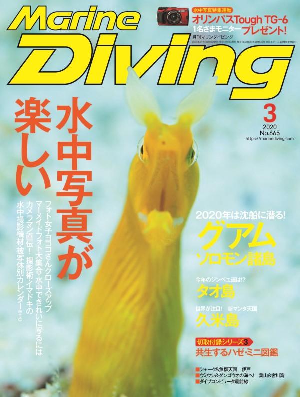 マリンダイビング2020年3月号No.665