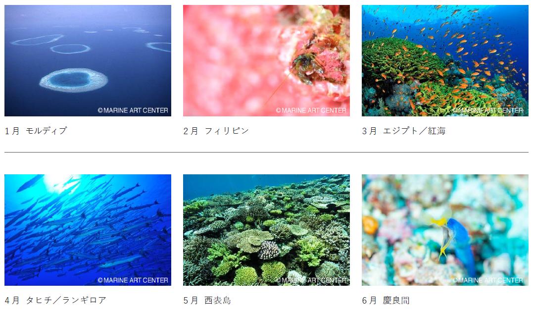 地球の海カレンダー2021
