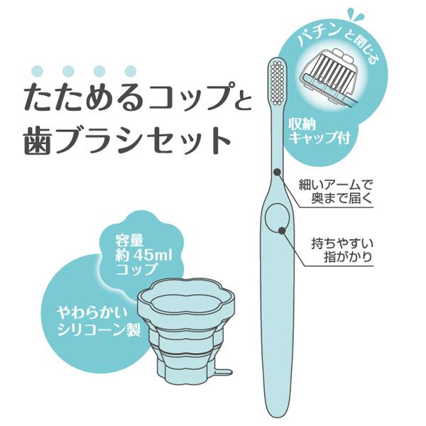 たためるコップと歯ブラシセット フラワー B015