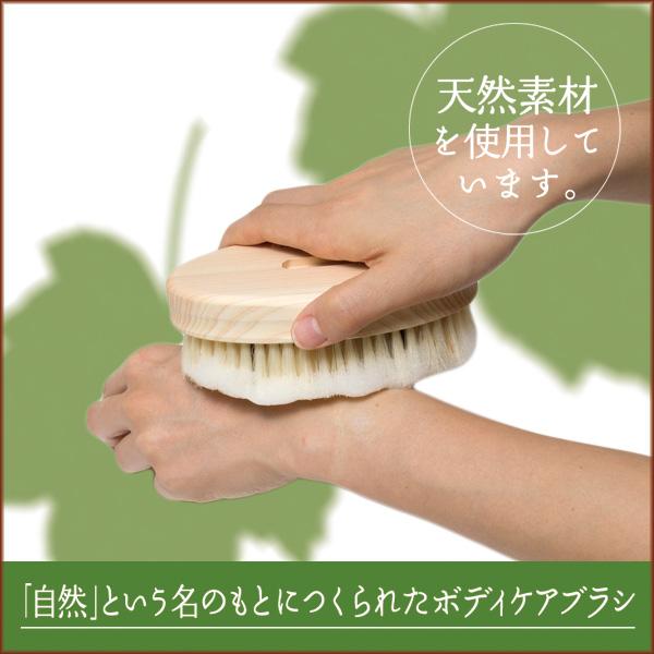 Bathボディブラシ曲柄 (豚毛) B573