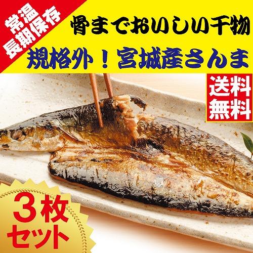規格外 骨までおいしい干物 さんま 3枚 【送料無料】