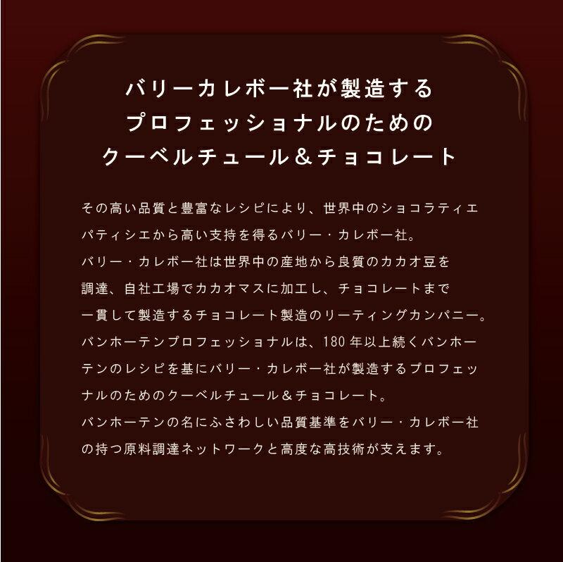 バンホーテン ホワイトチョコレート(カカオ分28%) / 1.5KG