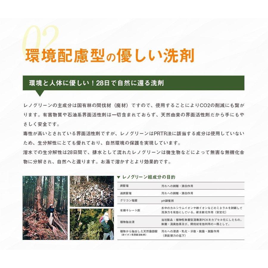 業務用 除菌 洗浄剤 ナインリボルバー レノグリーン 1kg(常温)