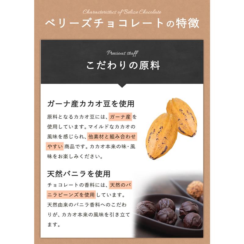 ベリーズ チップチョコ46% / 1KG