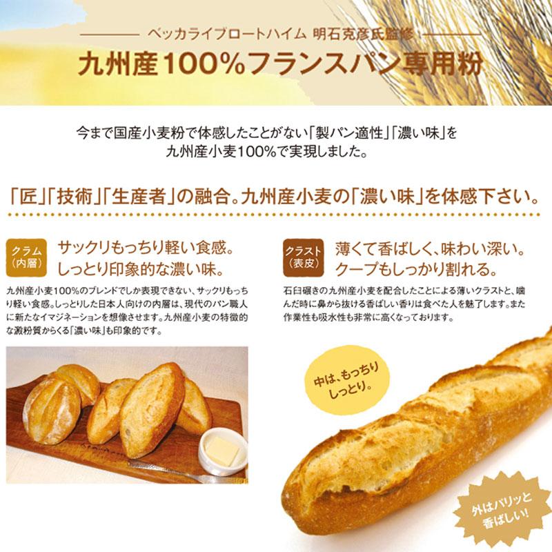 九州産フランスパン用準強力粉 九麦T-55 / 2.5KG