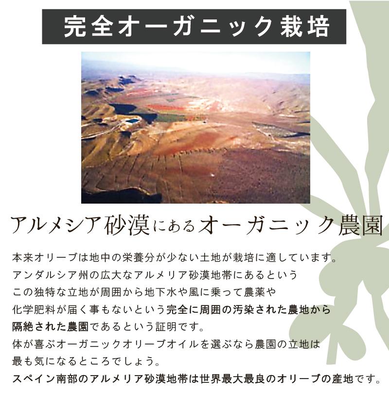 (お取り寄せ商品)レイナ オロデルデシエルト EXVオリーブオイル クパージュ 250ml (黄) Oro del Desierto Coupage (常温)