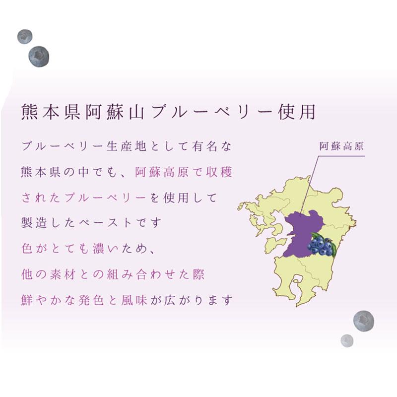 ジュペ 熊本県産ブルーベリー / 1KG
