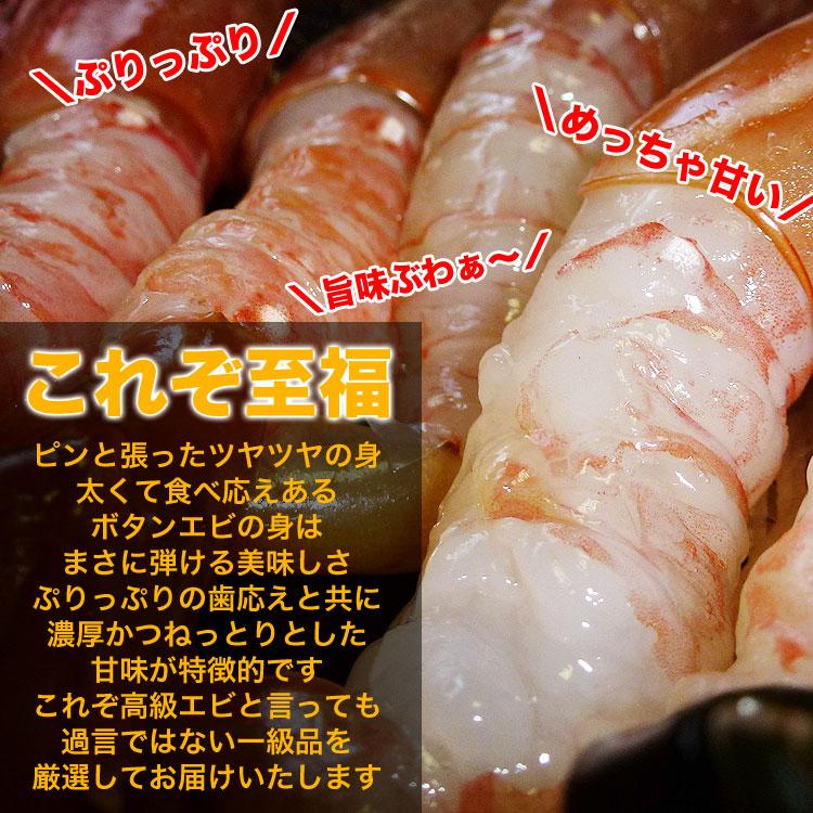 ボタンエビ 超特大 1kg前後(14尾前後)[えび/海老]