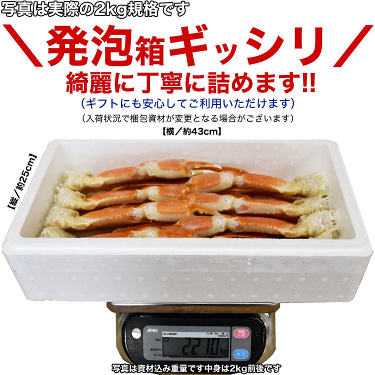 ズワイガニ 脚 総重量4kg(足 ずわいがに ずわい蟹 ズワイ蟹 zuwaigani かに カニ 蟹)(ボイル加熱済み)(訳あり 訳有 わけあり)
