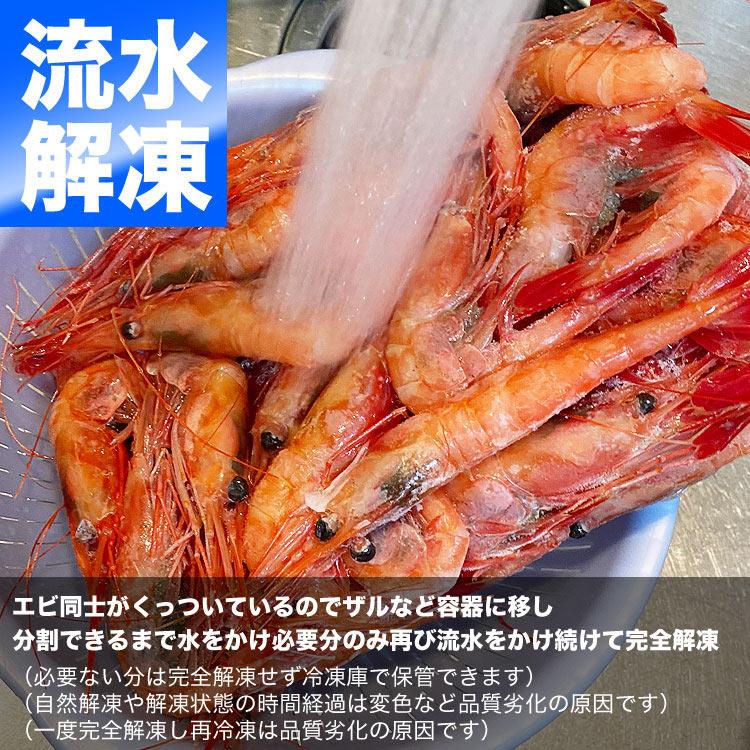 4L 甘えび ナンバンエビ 1kg前後[エビ えび 海老][刺身 握り寿司 ちらし寿司 手巻き寿司  海鮮丼 他エビ料理用に]