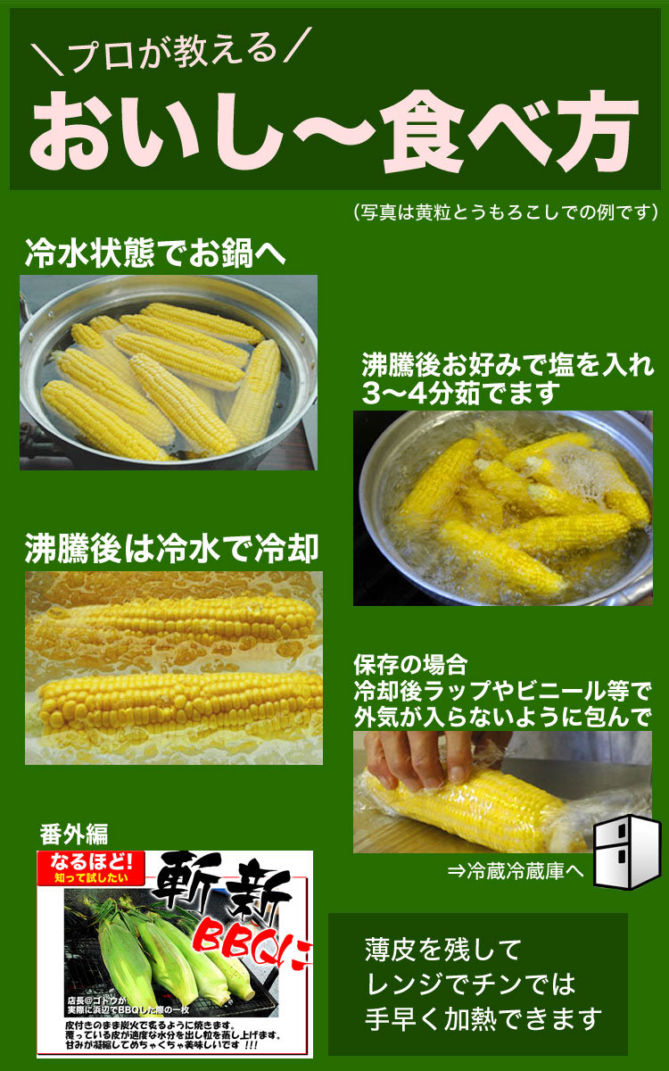 とうもろこし Lサイズ 黄 ゴールドラッシュ 20本 北海道産 [8月下旬前後頃から注文順に出荷][お届け日指定不可選択指定無効]