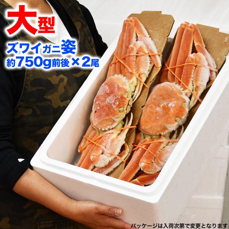 姿 ズワイガニ 2尾で1.5kg前後(1尾750g前後) ボイル加熱済み急速冷凍 ずわい蟹 (脚折れ入る場合あり)