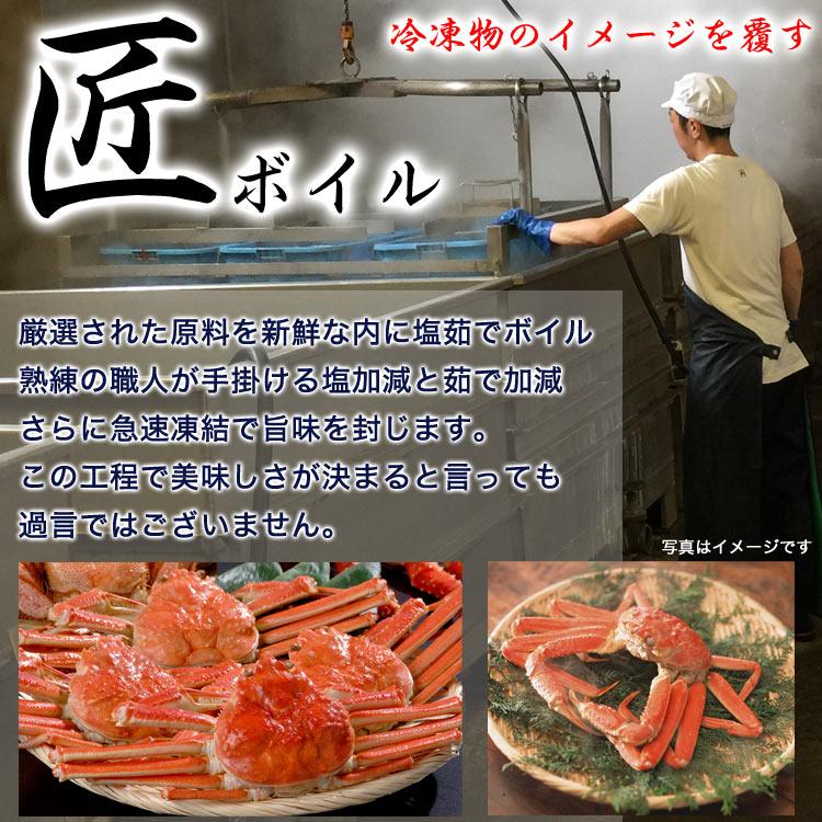 姿 ズワイガニ 2尾で1kg前後(1尾500g前後) ボイル加熱済み急速冷凍 ずわい蟹 (脚折れ入る場合あり)