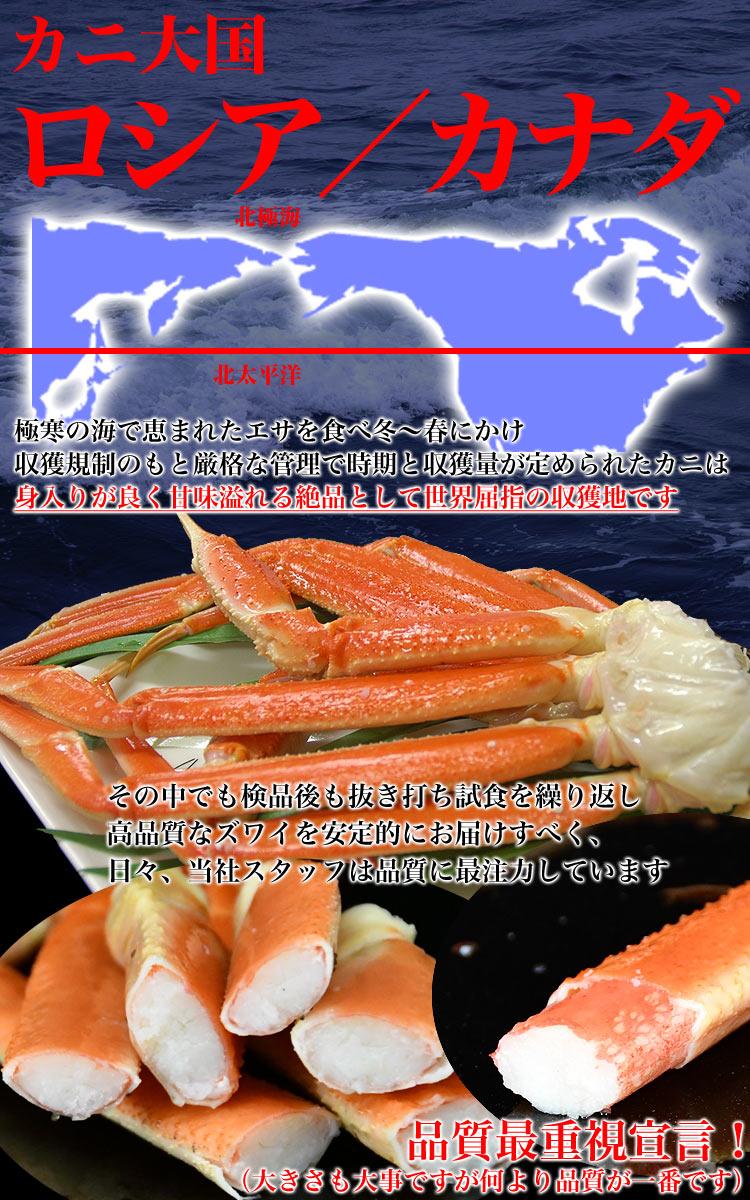 姿 ズワイガニ 2尾で1.4kg前後(1尾700g前後) ボイル加熱済み急速冷凍 ずわい蟹 (脚折れ入る場合あり)