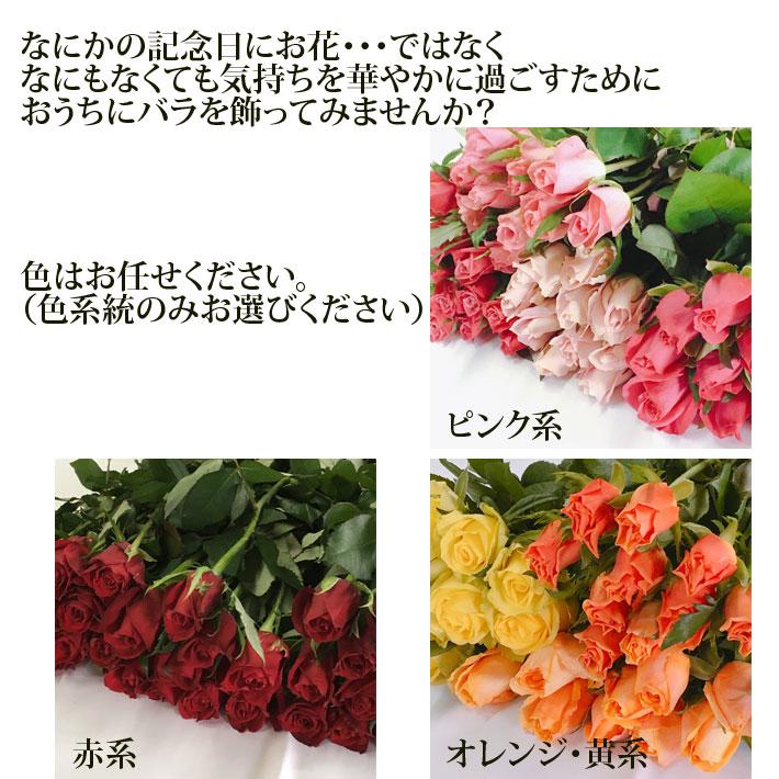 バラ 30本 山形県 寒河江市産 大沼バラ園 切り花 生産者直送のため同梱不可 送料無料 ピンク系 赤系 オレンジ黄色系 から選べます
