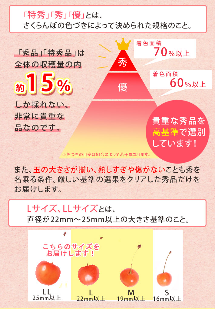 さくらんぼ 佐藤錦 山形県産 1kg バラ詰め (L以上のサイズお任せ) 送料無料