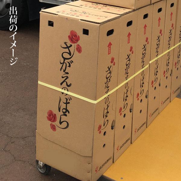 バラ 40本 山形県 寒河江市産 大沼バラ園 切り花 生産者直送のため同梱不可 送料無料 ピンク系 赤系 オレンジ黄色系 から選べます