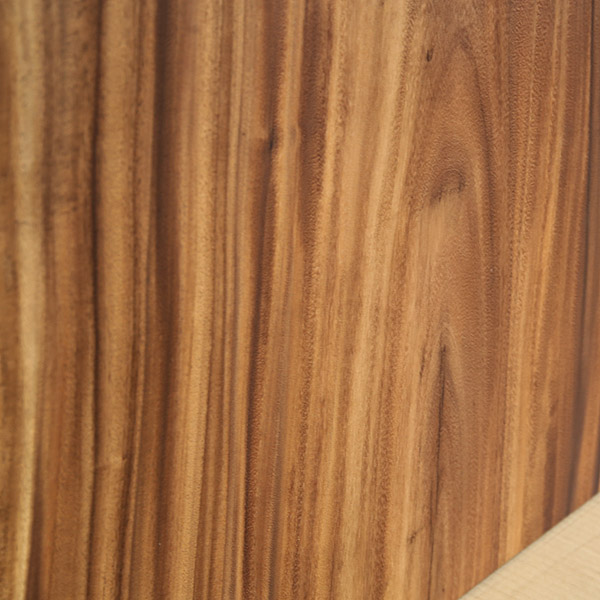 一枚板 天板のみ テーブル 無垢 幅160 モンキーポッド 1枚板 ナチュラル Dタイプ SENSO d VITA(センソ デ ヴィッタ)