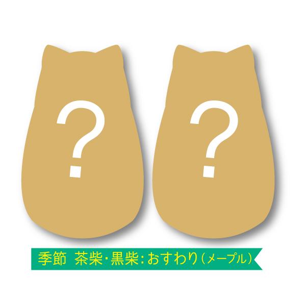 【柴犬くっきー】 3枚入 〜黒柴〜
