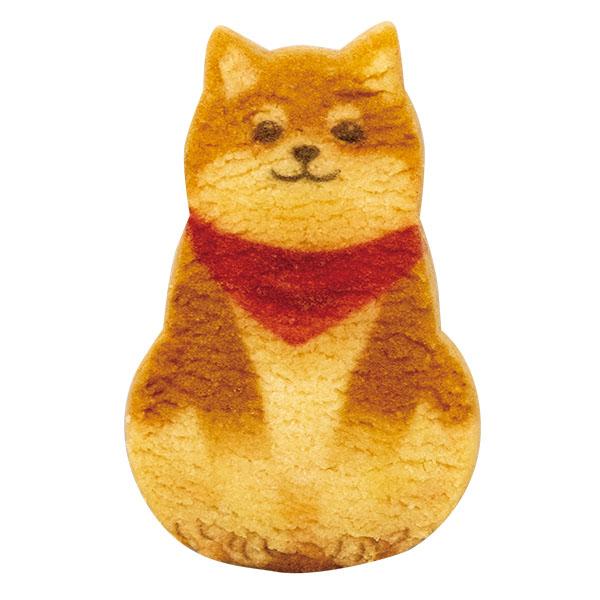 【柴犬くっきー】 10枚入