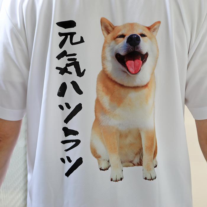 柴犬まるの Happy Father's Day <br>〜 パパ、毎日着てね☆ドライT&ステテコセット 〜