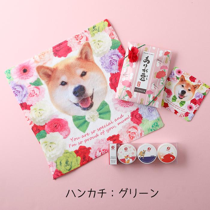 柴犬まるの Happy Mother's Day<br>綿ポリハンカチとまかないこすめのセット