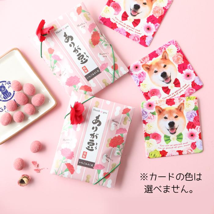 柴犬まるの Happy Mother's Day<br>ランチョンマットセット