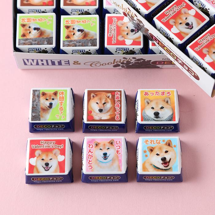 柴犬まるのDECOチョコ30個入り☆アソート箱