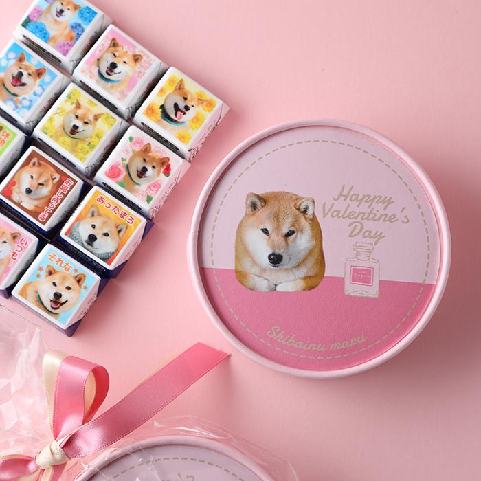 柴犬まるのDECOチョコ12個入り☆ラウンドケース