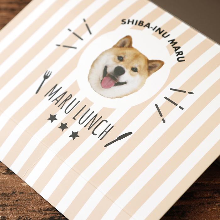 キャンドゥ第5弾  柴犬まる ペーパーランチボックス 2枚セット