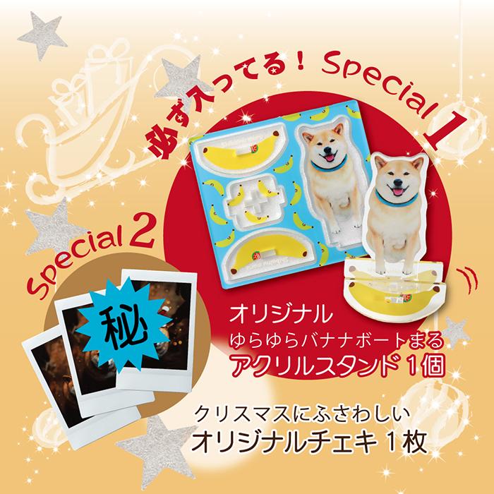 柴犬まるからクリスマスの贈り物 <br> 〜 A Very Merry Christmas to YOU! 〜