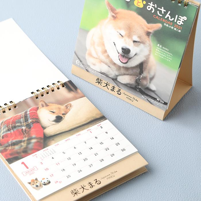 柴犬まるとおさんぽ 2021年卓上カレンダー