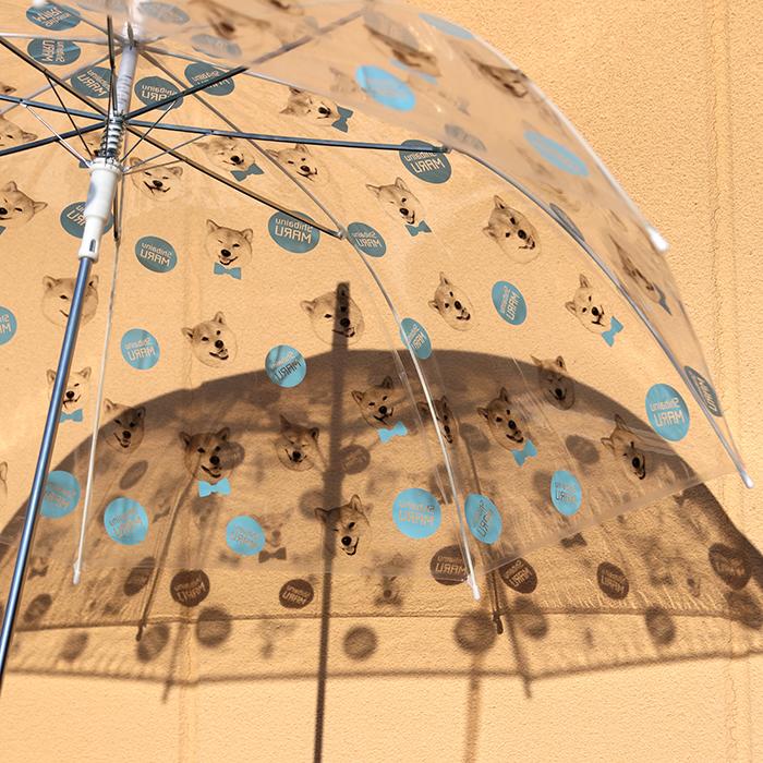 柴犬まる 水たま傘(単品)