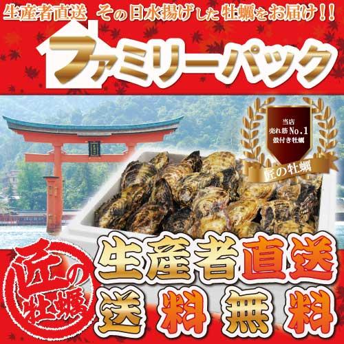 ファミリーパック(活き)一粒殻付き牡蠣(M)40個+3個
