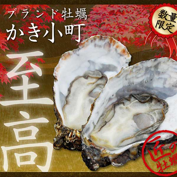 (活き)かき小町(ブランド牡蠣)【数量限定】