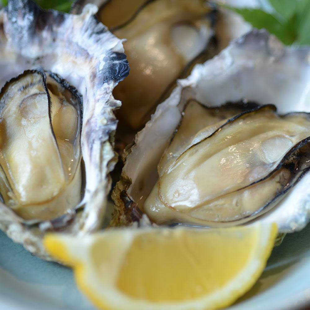 広島県産冷凍殻付き牡蠣10個入り×2個【数量限定】