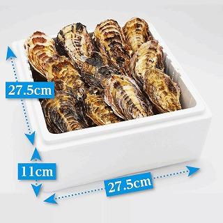 (活き)一粒殻付き牡蠣Lサイズ(大)20個