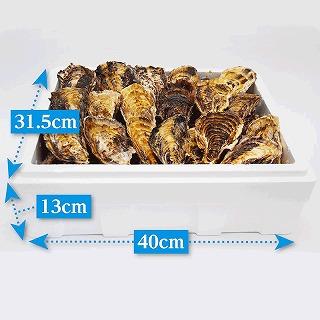 (活き)一粒殻付き牡蠣Lサイズ(大)30個