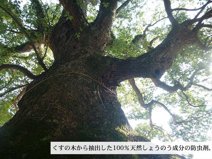 衣料用植物防虫剤 くすの木しょうのう